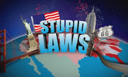 The Different Types of Stupid Laws